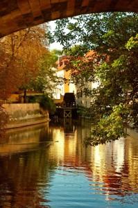 Encuentra aquí las mejores ofertas de Vuelos a Venecia.