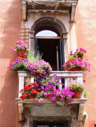 Vuelos Venecia: fachada de las casas de venecia.